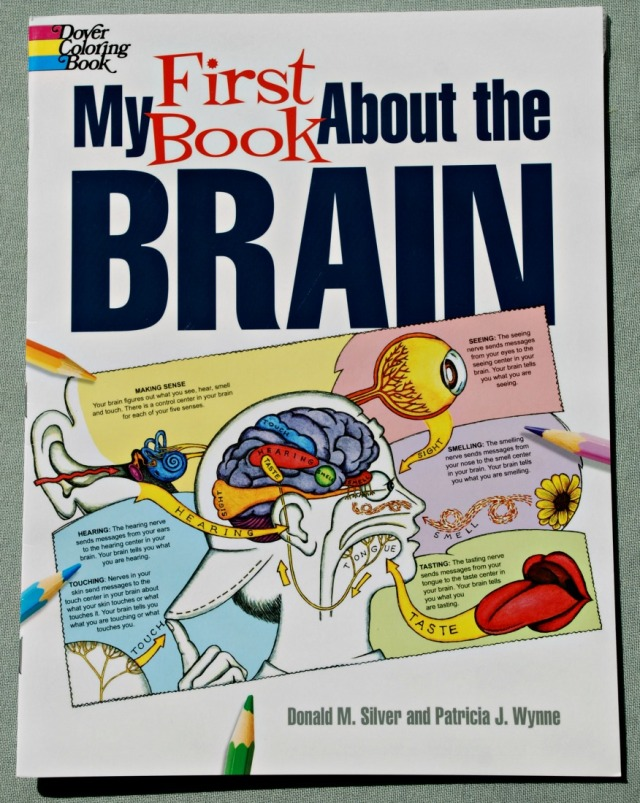 My First Book about the Brain by Dover coloring