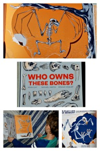 Who Owns These Bones. A stunning children's book which shows a wide range of skeletons