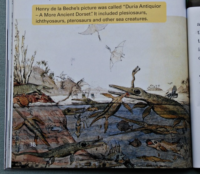 BIG CAT reader Mary Anning Fossil Hunter includes the picture that Henry de la Beche created called Duria Antiquior