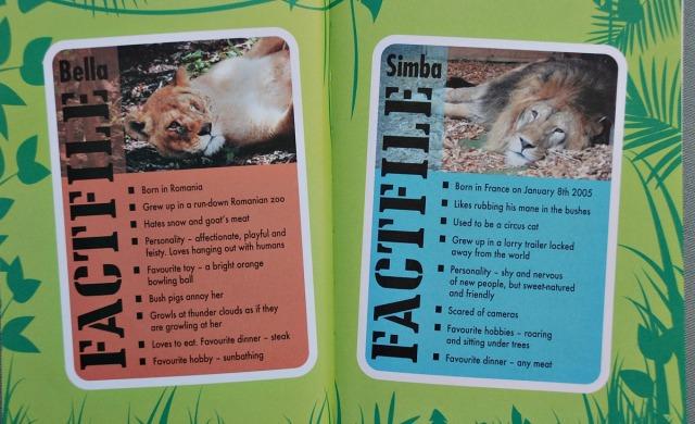 Born Free Bella and Simba Factfile