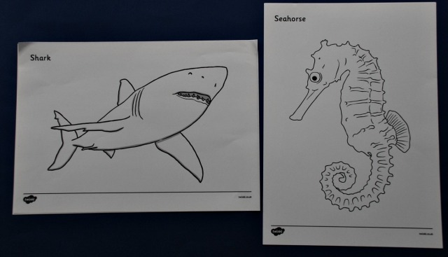 Free to download Under the Sea colouring pages from Twinkl Resources include this shark page and the Seahorse page