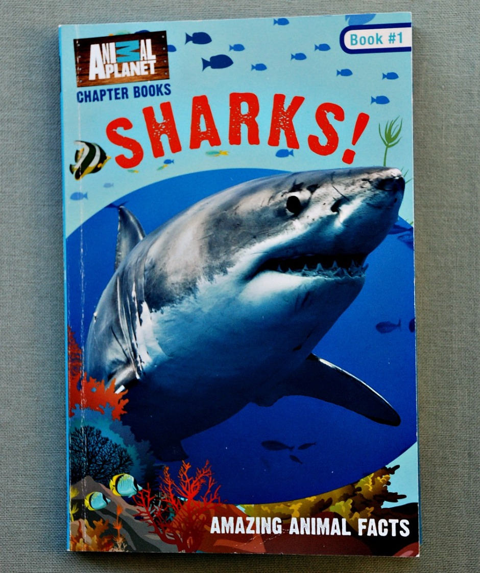 Sharks ! Animal Planet Chapter Book. Filled of information about Sharks