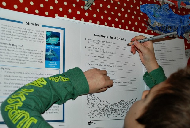 Shark Comprehension from Twinkl Resources