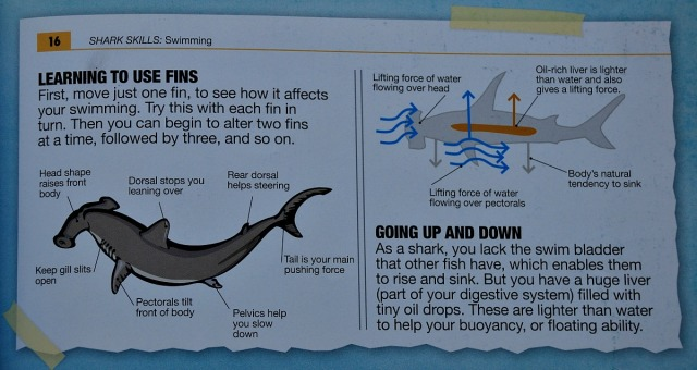 Animal Shark Diaries. some of the facts included in the book