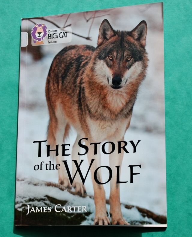 Collins BIG CAT Information range. The Story of the Wolf. Great to use as part of a Wolf topic