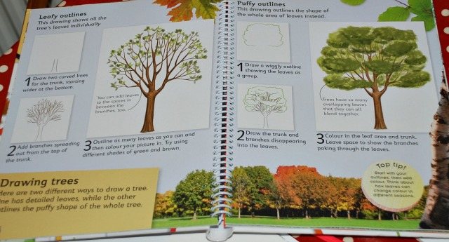 DK How to Draw Book includes two examples if drawing trees