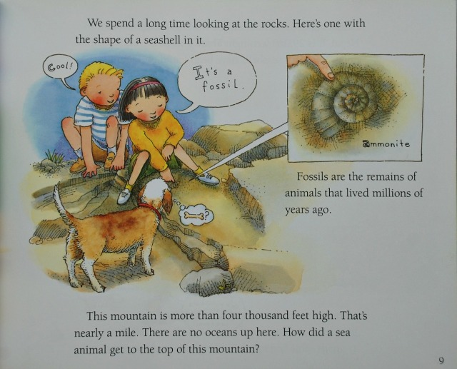 How Mountains Are Made a fossil on top of the mountain.  Geography resource for kids