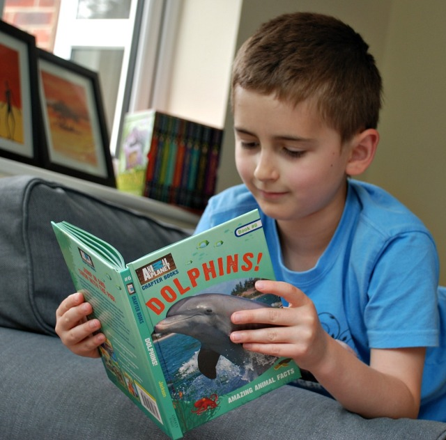 reading the animal planet chapter book Dolphins. A good early chapter non-fiction book
