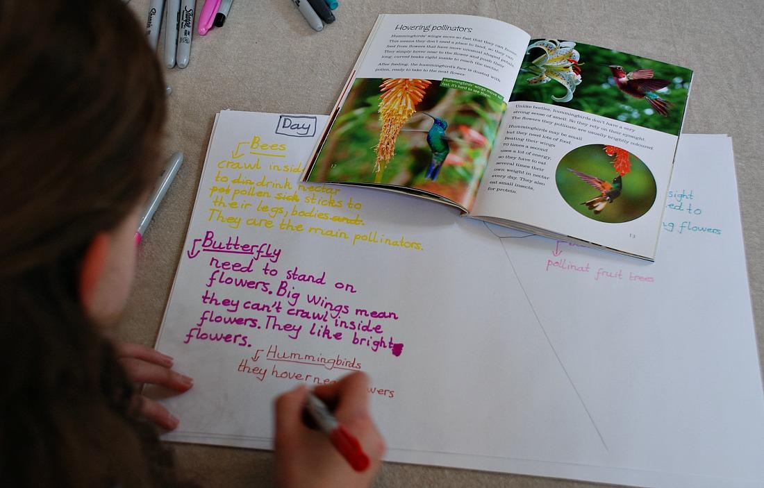 summarizing the pollinators book onto a page