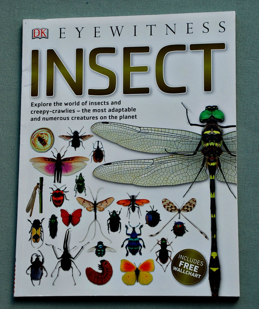DK Eyewitness Insect Book. Filled of amazing facts and details