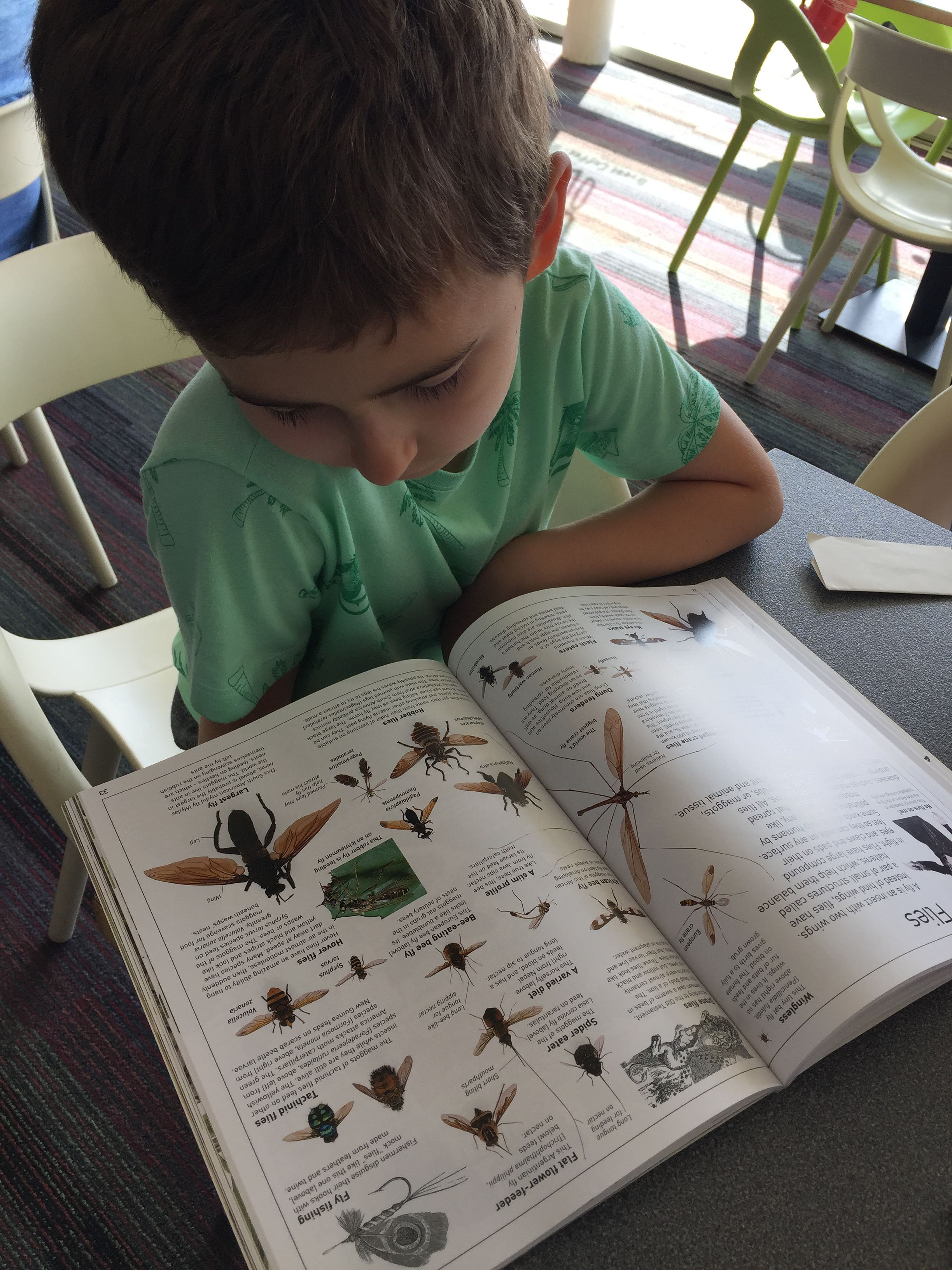 reading his DK Insect book