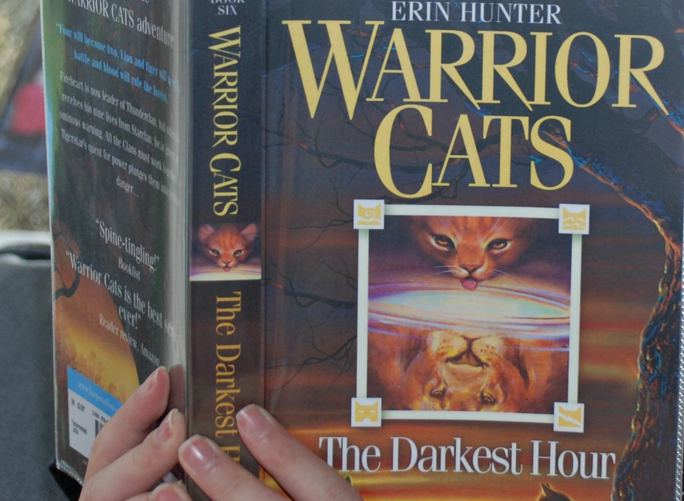 Warrior Cats the darkest hour