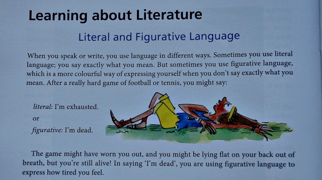 What Your Year 6 CHild needs to Know. English literal vs figurative language