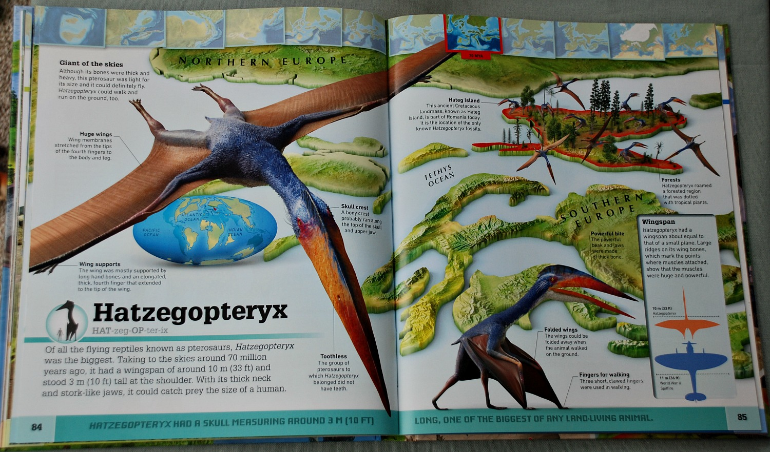 inside page of What's Where on Earth Dinosaurs and other Prehistoric Life