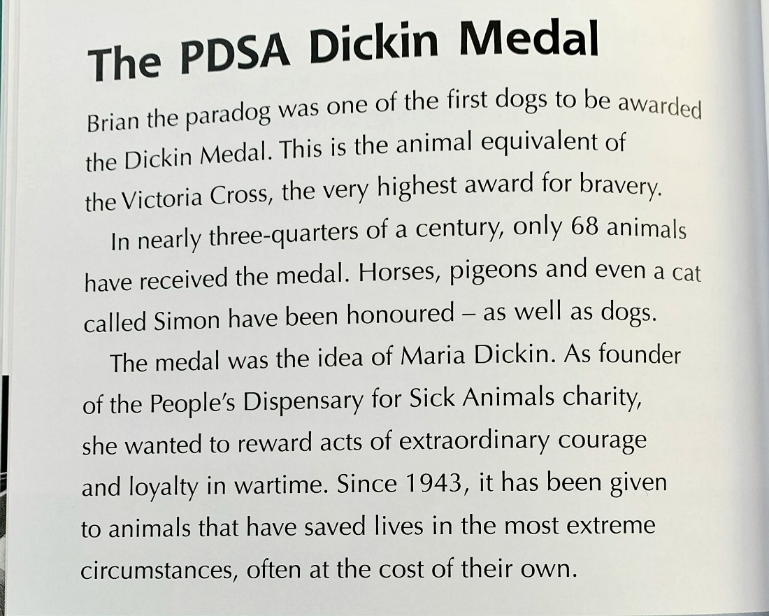 War School for Dogs. Medals for the dogs in battle