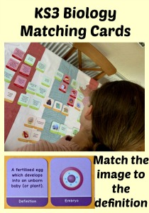 Biology Pairs Matching game. Match the image to the description. KS3 Science. Fun revision