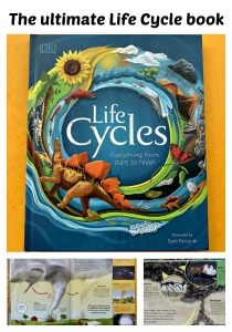 The ultimate life cycles book. Everything from a tornado to animals and plants.