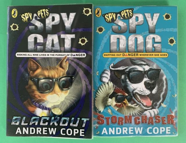 spy dog and spy cat